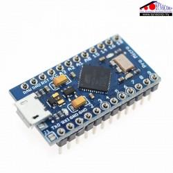 Arduino Pro Micro...