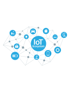 Internet Of Things ( IOT )